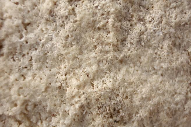 Closeup Walsingham Fmn.jpg