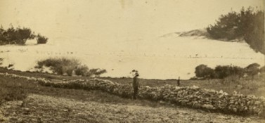 "Figure 3f. Nineteenth century south shore dunes.  This photo of active dunes encroaching onto fields behind Elbow Beach was captured  by members by the famous British ""Challenger Expedition"" who stopped in Bermuda in 1873."
