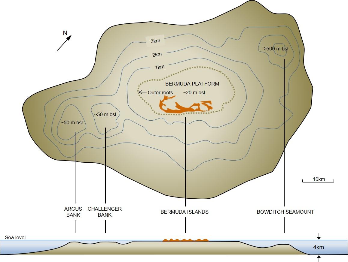 Four Seamounts