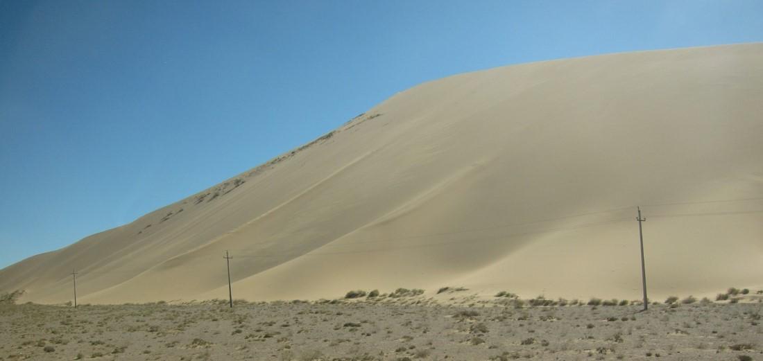 Gobie dune