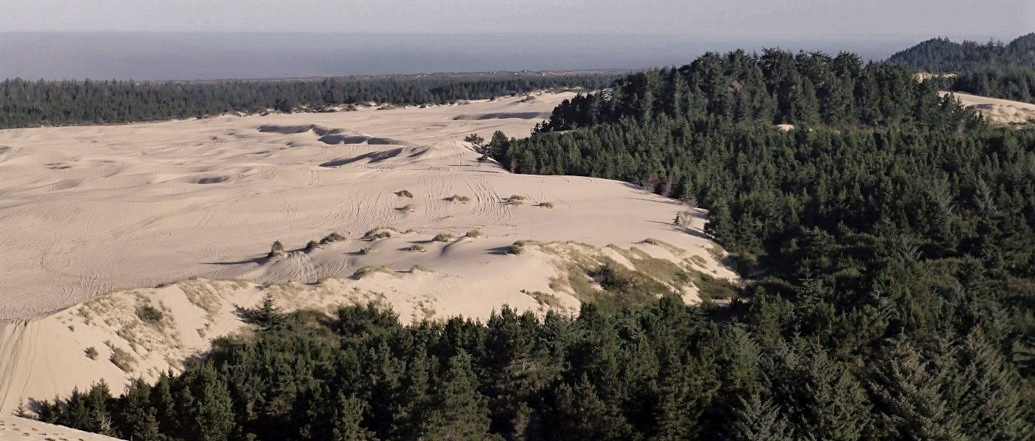 Oregon dune