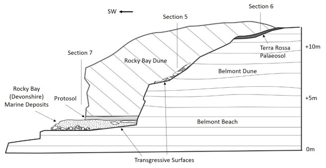 Headland Section