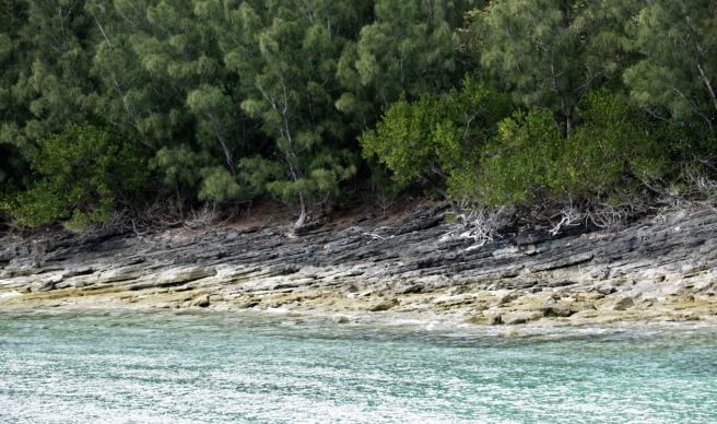 Beach strata